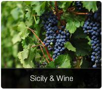 Etna y el vino