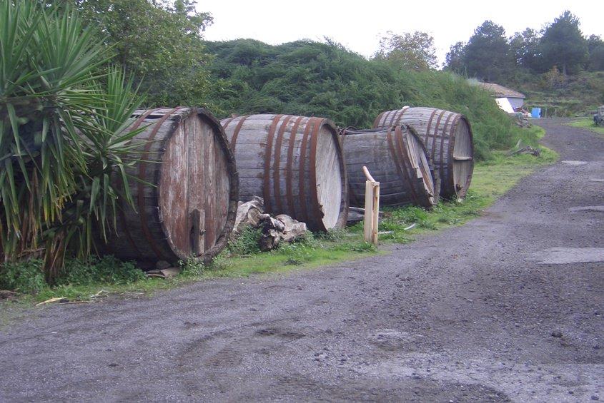 Sicily Wineries