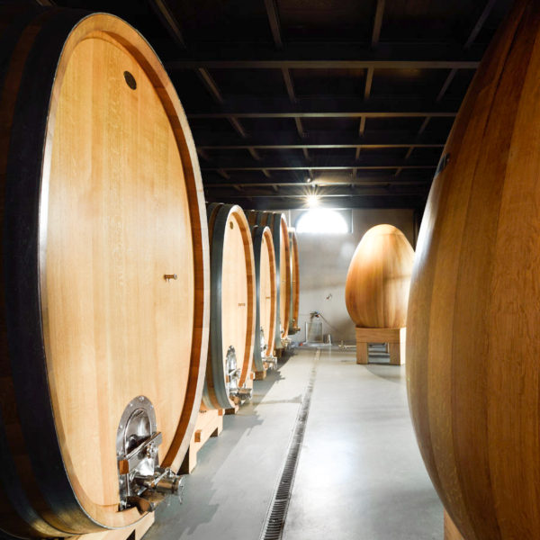 Mount Etna Winery Tour