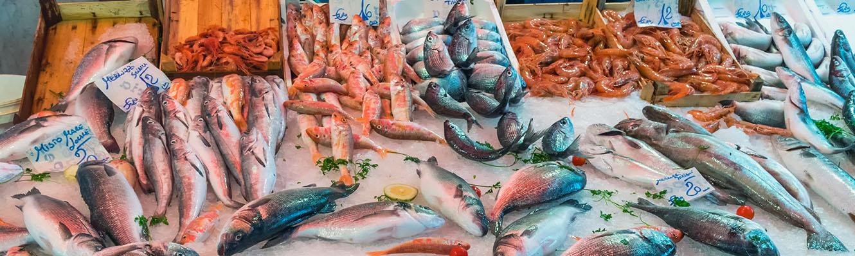 Catania Food Tour Fish Market