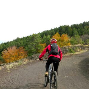 Alternative Mt Etna: by bike, helicoper or with alpacas
